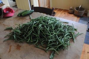 Sept 2012 beans