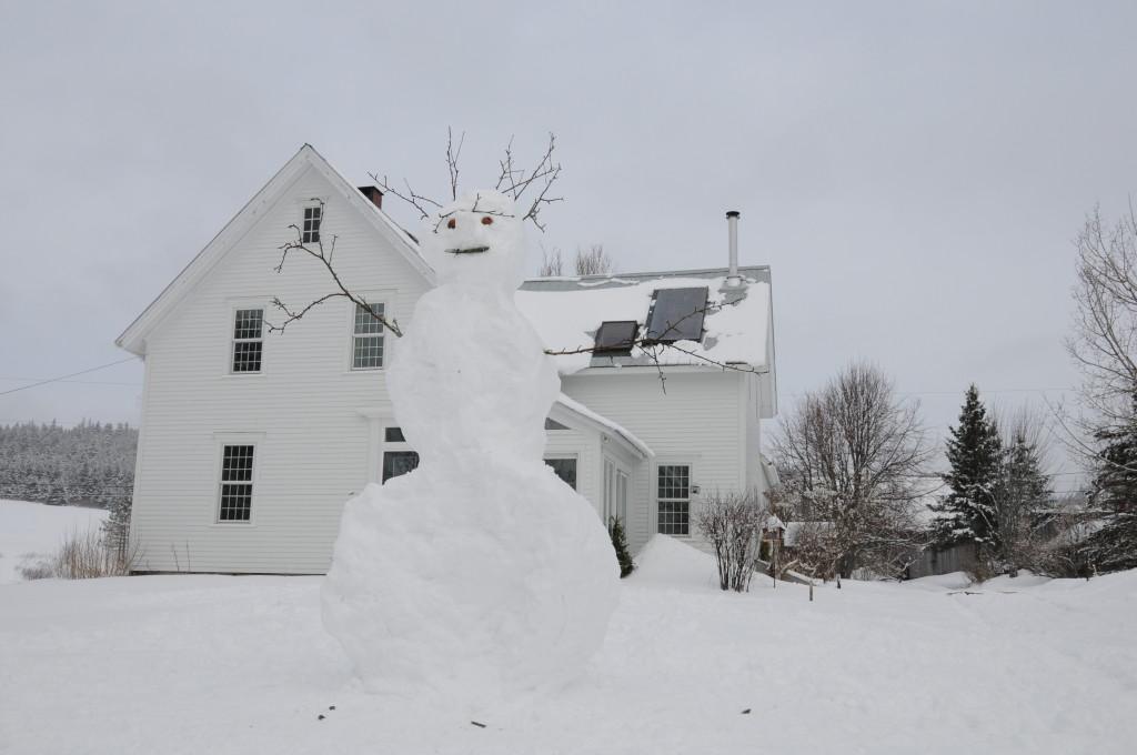 Winter 2009 winter scenes-1